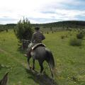 HORSEBACK RIDING AT HANECK