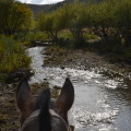 LA FRAGUA HORSEBACK RIDING