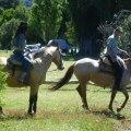 BAQUEANOS HORSEBACK RIDING